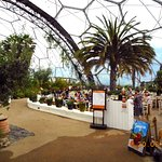 Photo of Eden Project