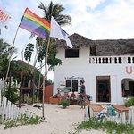 Uhuru Kite Zanzibar-billede