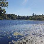 Mugdock Country Park照片