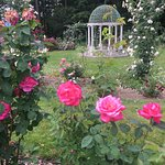 The Rose Garden at Lyndhurst