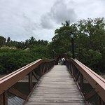 Bilde fra Salinas Maragogi All Inclusive Resort