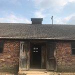 Foto di Museo statale di Auschwitz-Birkenau