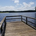Percy Quin State Park Campground Photo