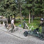 Foto de Sled Dog Demonstration