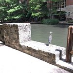 And more Riverwalk pictures