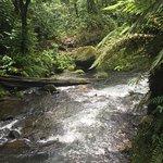 拉巴斯瀑布花园照片