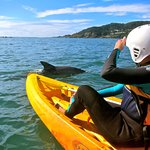 Earth To Surf Adventure Tour with Byron Bay Adventure Tours