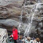 Rodne Fjord Cruise to Mostraumen 2