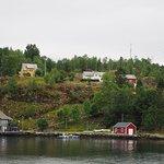 Rodne Fjord Cruise to Mostraumen 4
