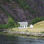 Rodne Fjord Cruise to Mostraumen 5