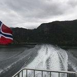 Rodne Fjord Cruise to Mostraumen 6