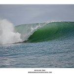 Foto de Mono Loco Surf School