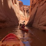 Bilde fra Kayak Lake Powell - Rentals and Day Tours