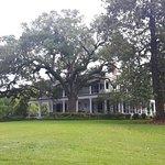 Brandon Hall Plantation照片