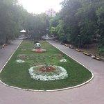 City Gardens Photo