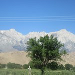 Views of the Mountains from Best Western Plus Frontier Motel, Lone Pine, Ca