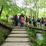 Foto di Plitvice Lakes National Park