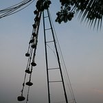 Photo of Chinese Fishing Nets