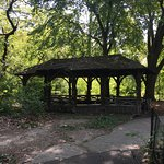 Rustic shelter in The Ramble