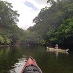 Kayaking to Nakara Waterfall.