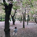 Foto de Tsuruma Park
