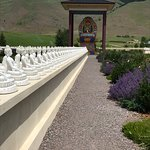 Some of the 1000 buddhas