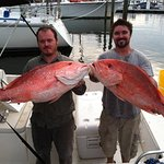 Two Big Red Snappers