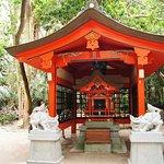 Aoshima Shrine照片