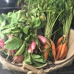 Bellair Farms local organic produce: a sample from June 2018!
