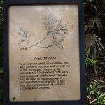 Educational information along hiking trail