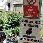 Bilde fra Grasmere Tea Gardens