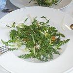 Ensalada de xicoia (hierba silvestre, de temporada).