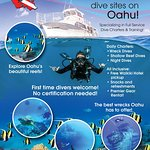 Dive the best dive sites on Oahu with Dive Oahu