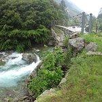 Foto de Parco Naturale delle Alpi Marittime