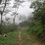 A perspective from the top of the mountain at Finca La Fortuna
