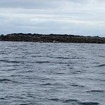 Фотография Bella Jane Boat Trips & AquaXplore