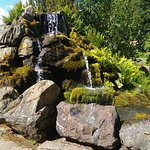 Threave Gardens, rockery waterfall
