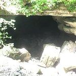 Φωτογραφία: Virgin Falls State Natural Area