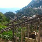Foto van Ravello - Atrani Walk