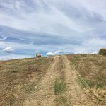 Photo of Crete Senesi