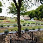 Prayer Lavender Garden
