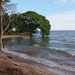 Bilde fra Banda Island Resort and Campsite