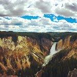 Yellowstone falls - gorgeous!
