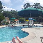 same pool with large umbrella covering section of pool for shade.