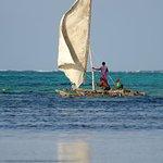 Tanzania-Experience Foto