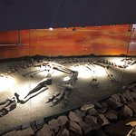 Museo del Desierto의 사진