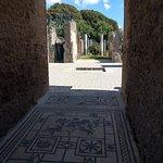 Foto di Casa del Fauno