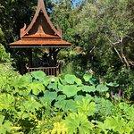 Giardini La Mortella – fénykép