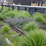 Forlatte (og forhatte) togskinner har gitt nytt liv