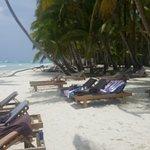 Bilde fra Latika Tours Excursions Punta-Cana & Bayahibe